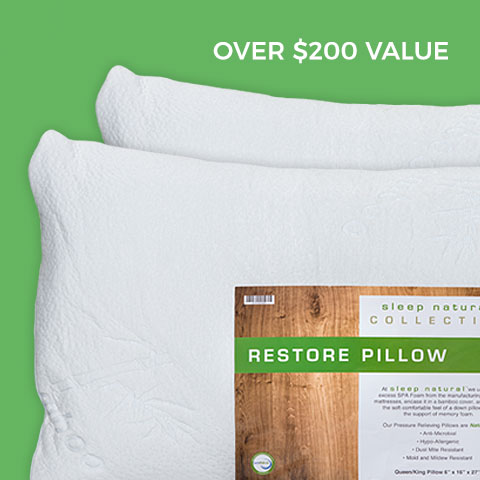 2 Free Pillows + Free Shipping with Any Mattress Purchase