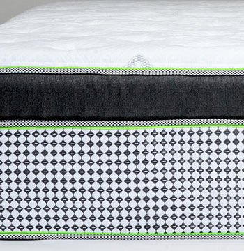 Sleep Natural™ Integrity Plush Eurotop Mattress