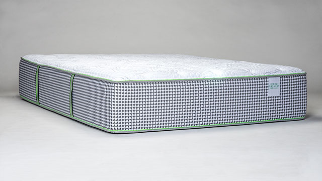 Sleep Natural™ Viewpoint Firm Mattress