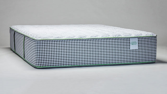 Sleep Natural™ Viewpoint Plush Mattress